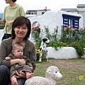 和小綿羊拍照
