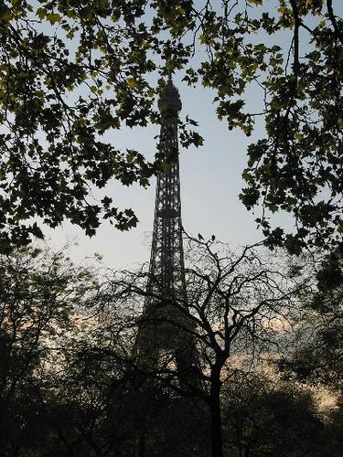 Tour Eiffel-3.jpg