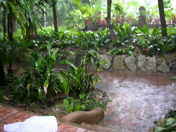 SAFARI前的傾盆大雨