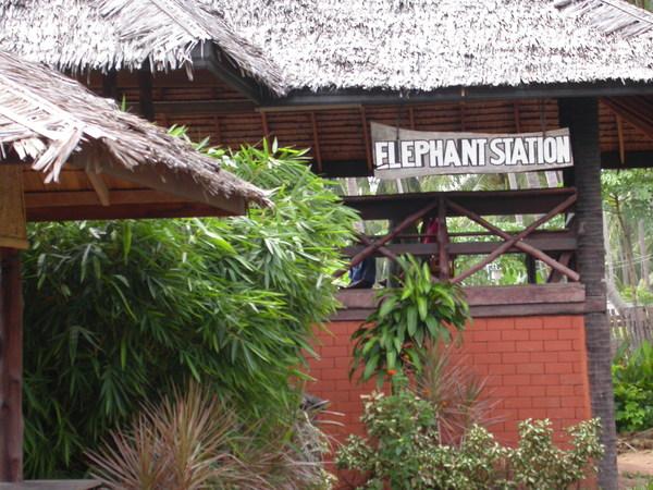 高架的Elephant Station是為了配合大象的高度~