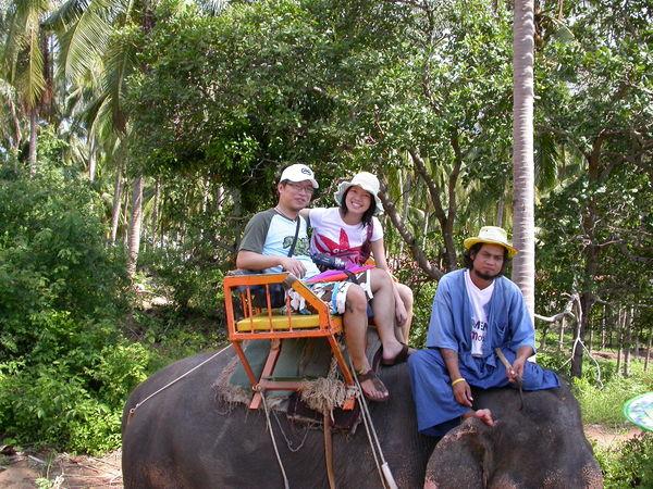 SAFARI的重頭戲--騎大象~