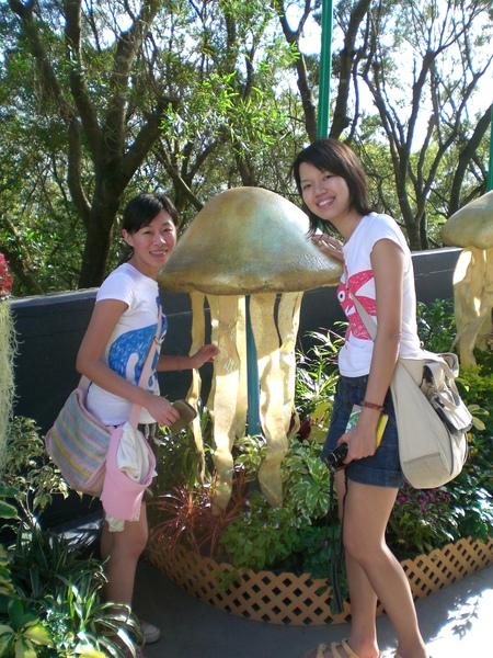 超大水母:P