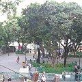 從美都餐室二樓俯看天后廟廣場