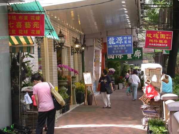 整條街都是花店
