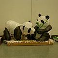 熊貓是今年主角