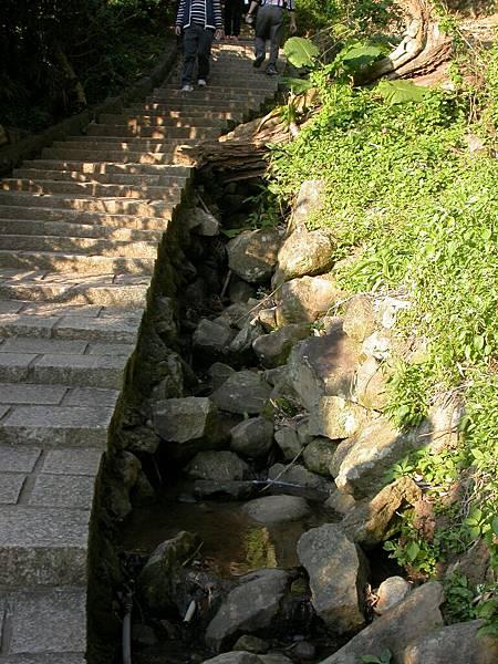 一路上都有這些潺潺流水聲伴隨著我們的步伐