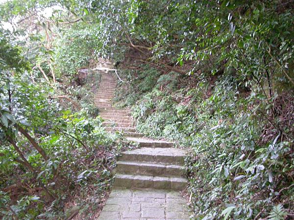 我們選擇往左,翠峰步道