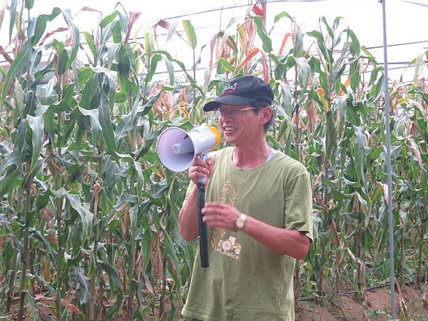 謝大哥開始講解崎頂這個地方的簡史和摘玉米的方法~