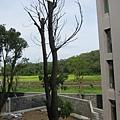2F陽台外view