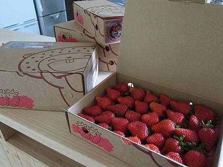 賣相很好的草莓
