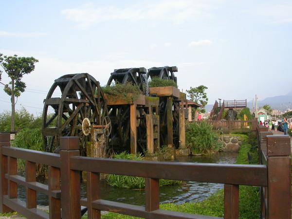 三芝盛產水車