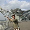 往國際海洋館(新館)的章魚