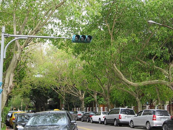 綠! 就是富錦街給人最鮮明的印象~