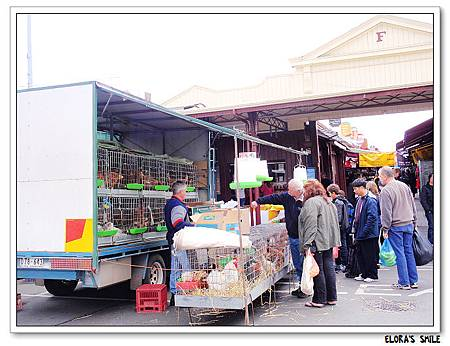 Victoria Market (4)