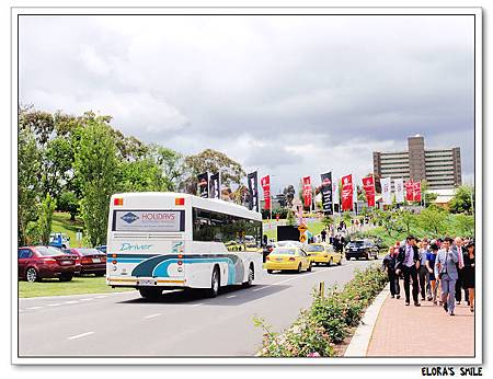 Melbourne Cup (18)
