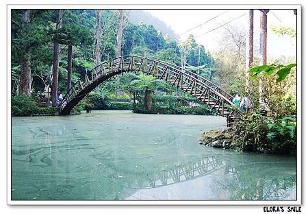 溪頭妖怪村 (128)