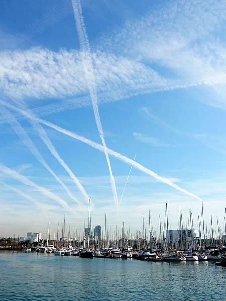 港口區的雲飄飄