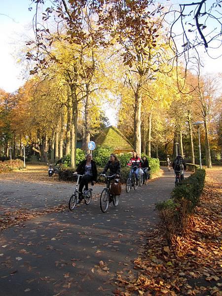 Wilhelminapark