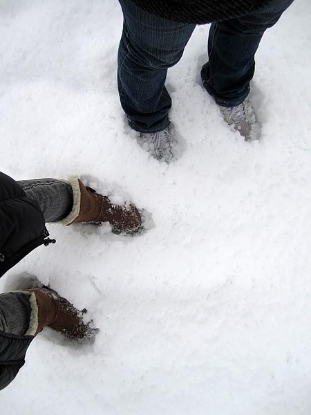 積雪深深 深幾許