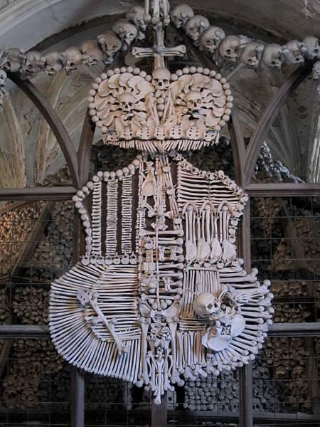 使用各部位的骨頭排成的徽章形狀