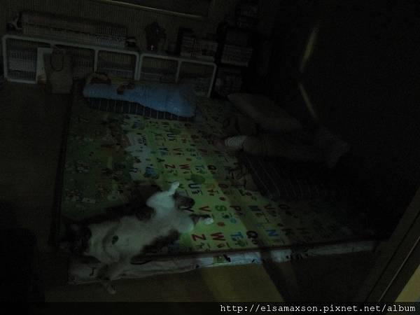 兩個寶貝睡翻天.JPG