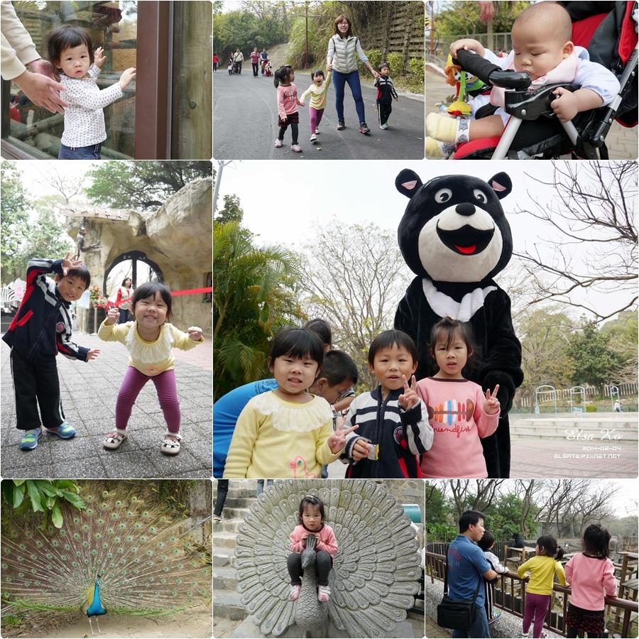 20140204壽山動物園