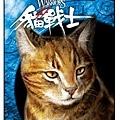 貓戰士icash 像心