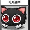 紅眼貓SR