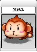 獼猴SR.png