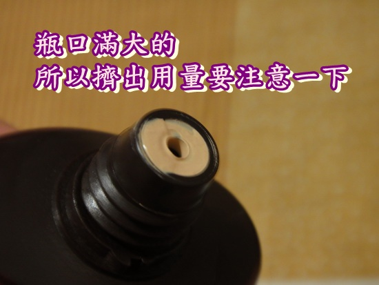 DSC02928_縮小大小.JPG