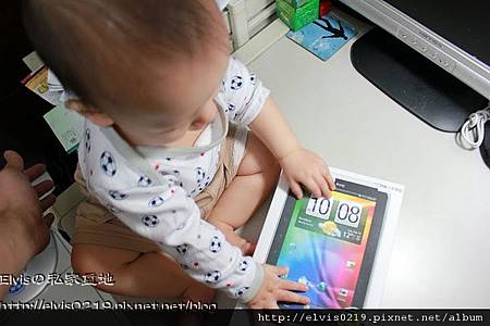 Elvis_IMG_6063_003.jpg