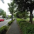 再往前一些經過許多民宅後也是只有公園,只不過比較大一點。