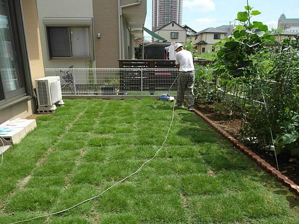公公上午十點來幫忙院子除草,我負責把割完的草掃起來。