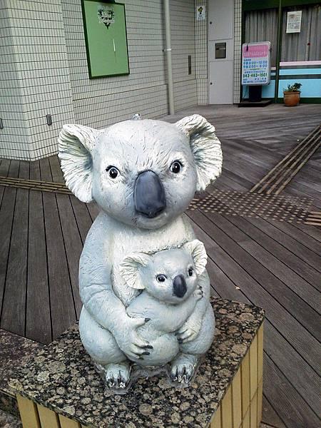 我家附近很多無尾熊:P