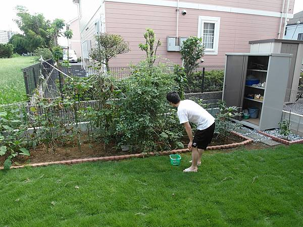 葉大師收成中,笨蛋穿短袖去院子被蚊子狂叮,左手在抓癢中。