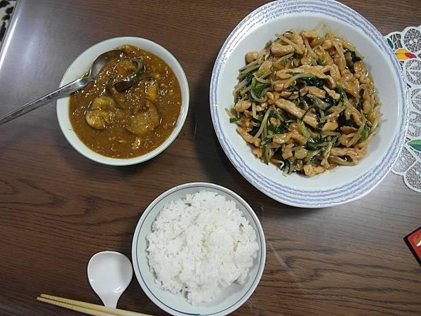 9/12 用大同電鍋煮絞肉茄子蘋果咖哩GOOD!/雞肉韭菜豆芽
