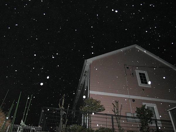 飄雪中,好興奮!