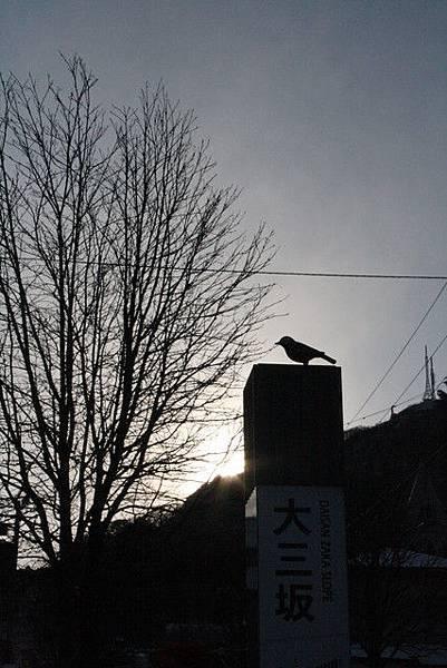 nice!! 恰巧拍到有隻鳥停在大三坂的石柱上面耶!