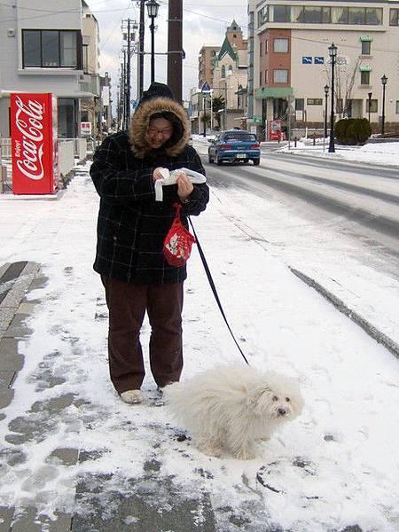 小狗狗在下雪天也是要出來大便的唷!好好笑喔~