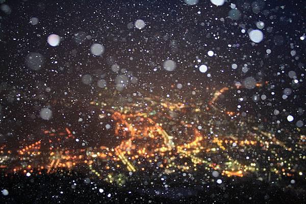 焦距糊了,開了閃光卻拍到下雪的樣子,好讚啊~滿点!