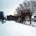 出發囉!昨晚飄了一夜的雪,車道是一片的白