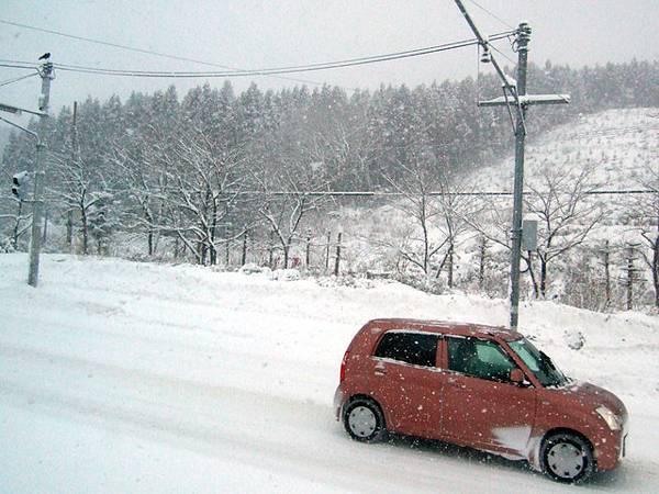 雪也越下越大,所有的東西都像是要被雪給覆蓋住了