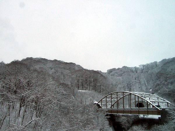 被雪染白成水墨畫般的樹海