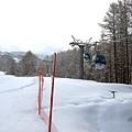 紅網子右邊的雪沒有被踩過還軟綿綿的,實在很想撲上去