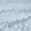 大家都說北海道的雪質最棒,因為它是粉雪,細緻程度就像粉末一樣