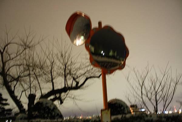 哦 拍糊了,重點是可愛的小花形狀的道路反射鏡