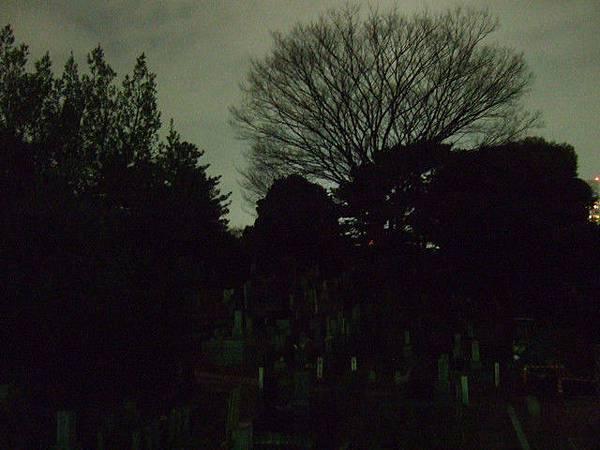 沿著大路旁走,越走越暗越冷清,雨雖然停了卻變得更冷了