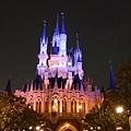 城堡後面也超美