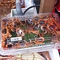 天啊這麼小的螃蟹要買來幹嘛?!