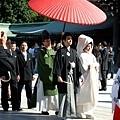 遇到來明治神宮結婚的新人,一堆人馬上衝上去拍照
